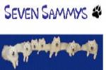 Seven Sammys