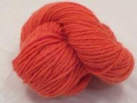 Seven Sammys -- Orange on Ruby